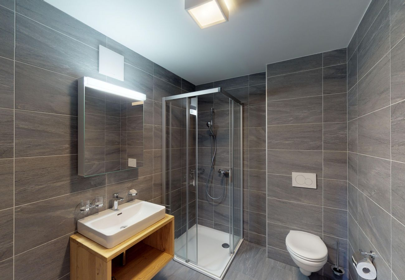 Apartment in Veysonnaz - Les Mayens MB 010 - LUXURY apartment 8 pers