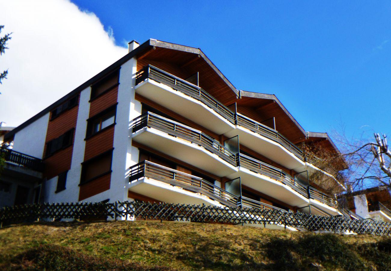 Apartment in Veysonnaz - Beaulieu F 012 - CENTER apartment 4 pers