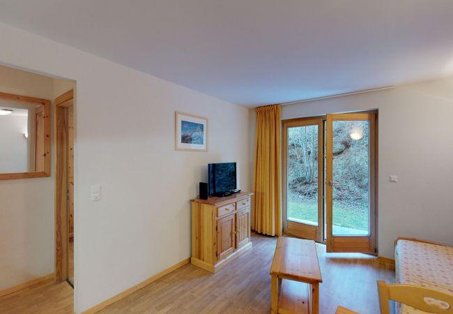 Haute-Nendaz - Apartment